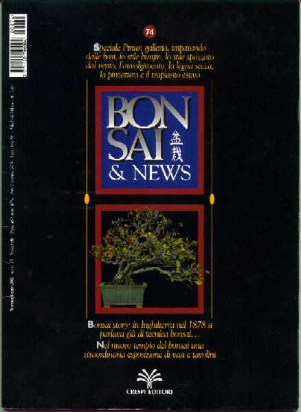 Bonsai & News, 2002