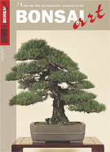 Bonsai Art