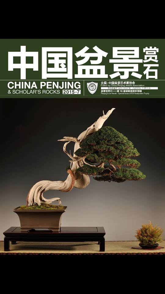 China Penjing & Scholar's Rocks 2015-7