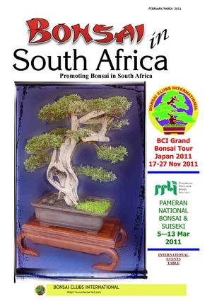 Bonsai in South Africa